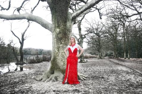 A Woodland Fairytale